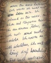 Notizen Sonnenkönigin